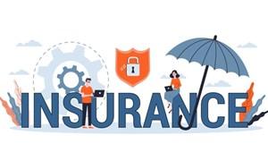 [Infographics] Bức tranh thị trường bảo hiểm Việt Nam 2 tháng đầu năm 2021