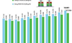 [Infographics] Giá xăng E5 RON 92 tăng như thế nào?