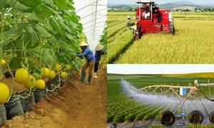 [Infographics] Ngành nông nghiệp phấn đấu xuất khẩu khoảng 50 tỷ USD vào năm 2025