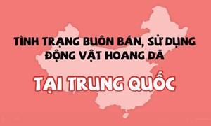 [Video] Trung Quốc cấm buôn bán động vật hoang dã
