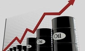 Giá dầu lập đỉnh 4 tháng sau tuyên bố của OPEC