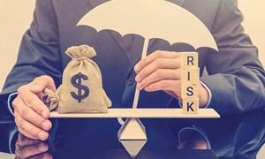 Ước lượng hiệu quả hoạt động ngân hàng thương mại Việt Nam