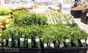 Siêu thị gói rau bằng lá chuối: Thiết thực bảo vệ môi trường