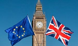 """EU tuyên bố không thể """"sống triền miên với tiến trình Brexit"""""""