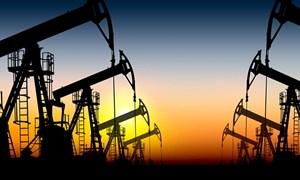 Cung dầu Mỹ tăng, giá dầu giảm
