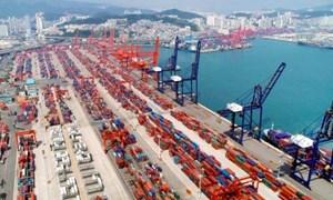 Xuất khẩu các nước châu Á đồng loạt sụt giảm