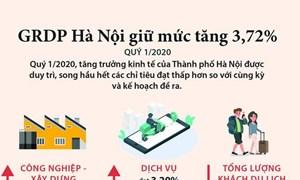 [Infographics] Trong quý I, GRDP của Hà Nội giữ được mức tăng 3,72%