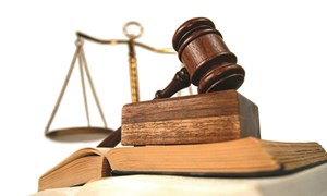 [Infographic] Thẩm quyền xử phạt vi phạm hành chính của hải quan trong lĩnh vực văn hóa và quảng cáo