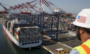 Việt Nam đóng góp gần 1/2 mức tăng tỷ trọng container từ ASEAN đến Hoa Kỳ