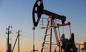 Giá dầu thô phục hồi nhẹ, thị trường lao động Hoa Kỳ bước vào giai đoạn bùng nổ