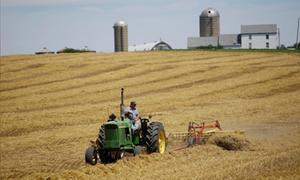 """Mỹ thanh toán hơn 8,5 tỷ USD cho nông dân ứng phó với """"thương chiến"""""""