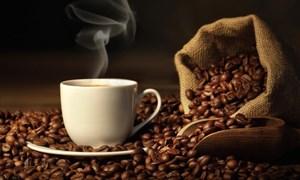 Giá cà phê ngày 17/5: Đi ngang, thị trường gặp khó do diễn biến phức tạp của dịch Covid-19