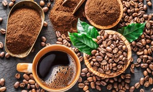 Giá cà phê ngày 18/5: Tín hiệu tích cực cho cà phê Robusta của Việt Nam