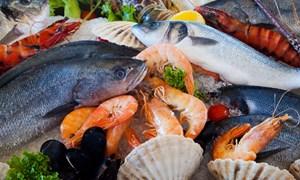 Vi phạm hành chính trong lĩnh vực thủy sản có thể bị phạt đến 1 tỷ đồng