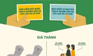 [Infographics] Người đi xe máy cần mua bảo hiểm gì?