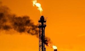 Giá dầu thế giới ghi nhận tuần giảm mạnh nhất trong năm