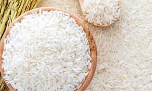 Thêm cơ hội cho gạo Việt sang Philippines