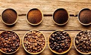 Giá cà phê ngày 27/5: Tiếp tục tăng, cao nhất 33.300 đồng/kg