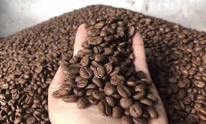 Giá cà phê ngày 28/5: Tiếp đà tăng, gần chạm mốc 34.000 đồng/kg