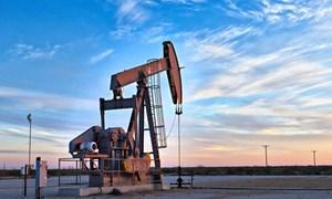 Mỹ xác nhận các cáo buộc đối với quan chức Chad trong vụ tham nhũng Griffiths Energy