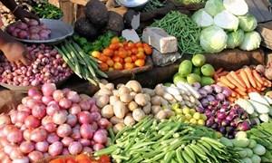 Giá thực phẩm ngày 29/5: Rau xanh giảm giá nhẹ