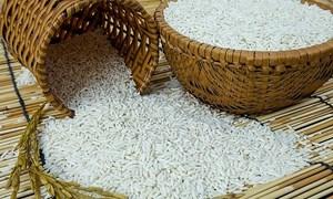 Đầu tuần, giá gạo nguyên liệu giảm mạnh 300 đồng