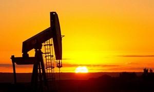 Giá dầu sụt giảm khi căng thẳng thương mại toàn cầu dâng cao