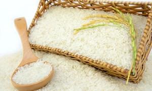Ngày 7/6, giá gạo nguyên liệu giảm mạnh 800 đồng