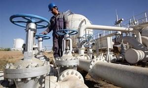 Giá dầu tăng do OPEC và các đối tác có thể cắt giảm nguồn cung