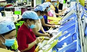 TP. Hồ Chí Minh: Vốn doanh nghiệp thành lập mới 5 tháng tăng hơn 36%