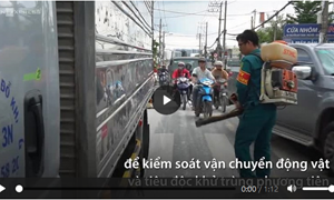 [Video] TP. Hồ Chí Minh phong tỏa ổ dịch tả lợn châu Phi