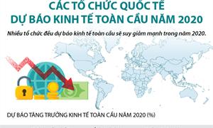 [Infographics] Các tổ chức quốc tế dự báo kinh tế toàn cầu năm 2020