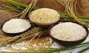 Ngày 17/6, giá gạo nguyên liệu tăng trở lại