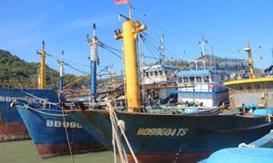 Đề xuất Nhà nước hỗ trợ lãi vay chưa trả được đối với các chủ tàu đóng theo Nghị định 67