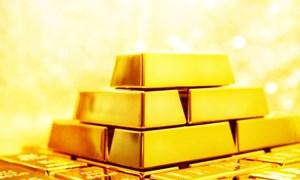 Dịch bệnh bùng phát khiến giá vàng tiếp tục tăng
