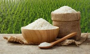 Ngày18/6, giá gạo xuất khẩu quay đầu giảm 5 USD/tấn