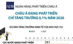 [Infographics] ADB: Châu Á đang phát triển tăng trưởng 0,1% năm 2020