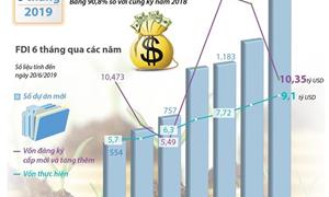 [Infographics] Vốn FDI vào Việt Nam đạt hơn 18 tỷ USD trong 6 tháng đầu năm