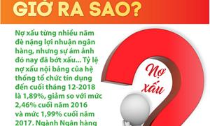 [Infographics] Nợ xấu ngân hàng Việt Nam giờ ra sao?