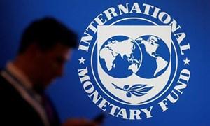 [Infographics] IMF dự báo kinh tế toàn cầu có thể giảm 4,9% trong năm 2020