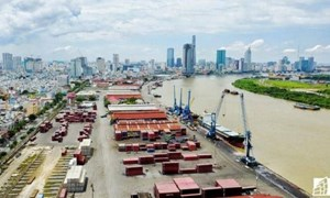 Cục Đường thủy kiến nghị miễn phí hạ tầng cảng biển tại TP. Hồ Chí Minh