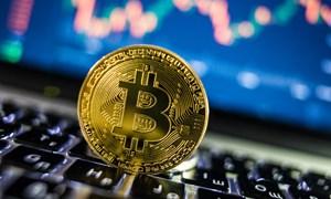 Vượt 13.000 USD, giá Bitcoin cao nhất 1 năm rưỡi
