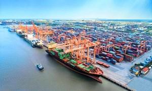 Cần hơn 300 nghìn tỷ đồng để phát triển hệ thống cảng biển