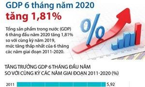 [Infographics] Tổng sản phẩm trong nước 6 tháng đầu năm tăng 1,81%