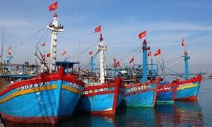 [Video] Phát triển kinh tế biển gắn với bảo vệ chủ quyền biển đảo