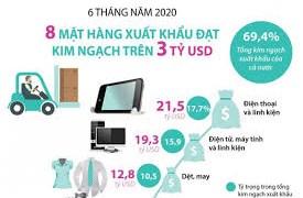 [Infographics] Sáu tháng đầu năm: 8 mặt hàng xuất khẩu trên 3 tỷ USD