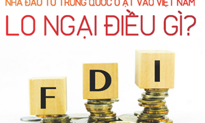 [Infographics] Nhà đầu tư Trung Quốc ồ ạt vào Việt Nam: Lo ngại điều gì?