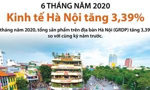 [Infographics] Sáu tháng đầu năm: Kinh tế Hà Nội tăng 3,39%