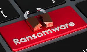 Tăng cường bảo mật thông tin cá nhân để ngăn chặn mã độc tống tiền
