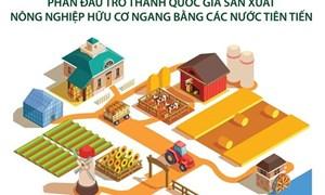 [Infographics] Phát triển nền nông nghiệp hữu cơ bền vững